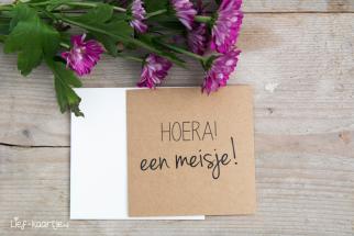 Kraft kaartje Hoera een meisje!