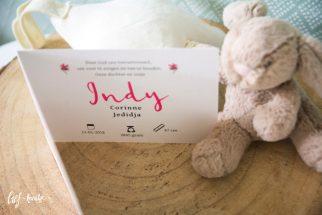 Geboortekaart met schaapjes